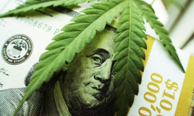 Cannabis-stocks-The-next-stock-market-trend-820x550