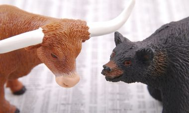 bull-1885566_960_720
