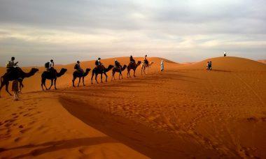 desert-caravan-dune-ride-53537
