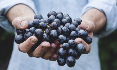 grapes-690230_960_720